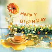 grattis på födelsedagen sötnos Grattis på födelsedagen sötnos – Appar på Google Play grattis på födelsedagen sötnos