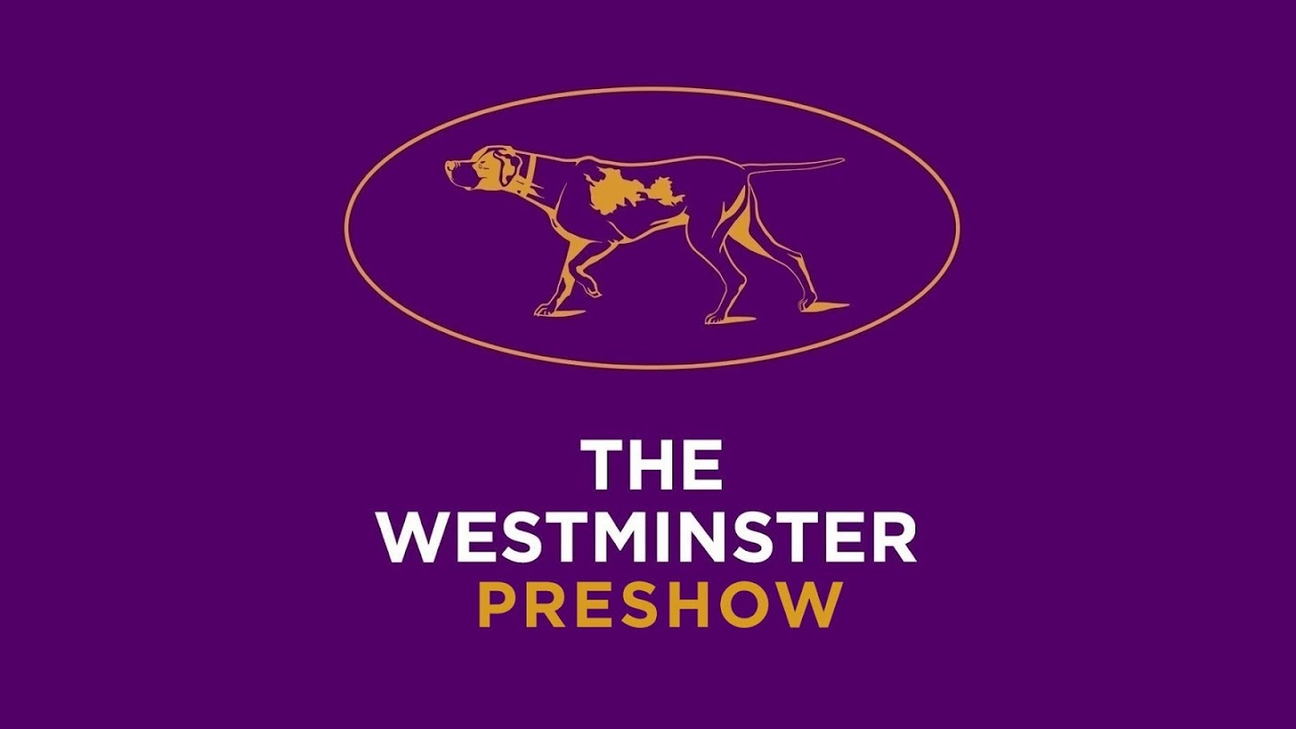 Watch The Westminster Preshow Live live