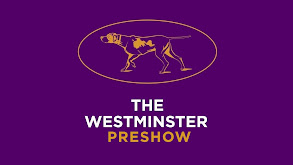 The Westminster Preshow Live thumbnail