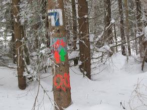 Photo: 14.Oryginalna kolorystyka szlaków rowerowych. Nieźle widać zimą heh.