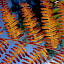 Fern by Philippe Smith-Smith - Nature Up Close Other plants ( forest, fern, backlight, close, summer )