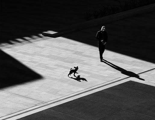 a passeggio con le ombre di angelo27