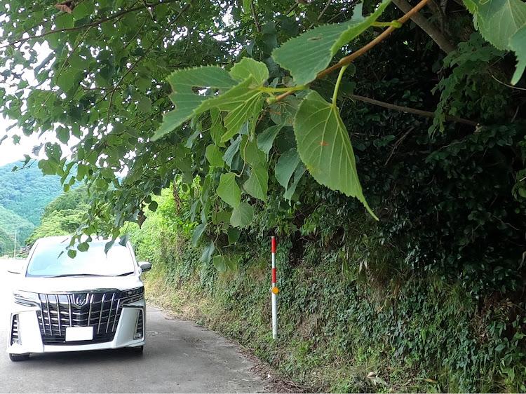 アルファード AGH30Wの愛車紹介,梅雨明け,8月もよろしくお願いします,ドライブ,DIYに関するカスタム&メンテナンスの投稿画像2枚目