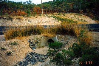 Photo: AUS-HYDR08 - Australia this culvert is now protected by vetiver