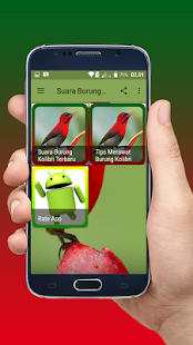 Suara Burung Kolibri Offline - náhled