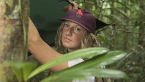 The Jungle Strikes Back thumbnail