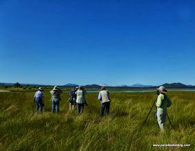 Photo: Buena Vista Audubon birders on Odell Creek, Davis Lake