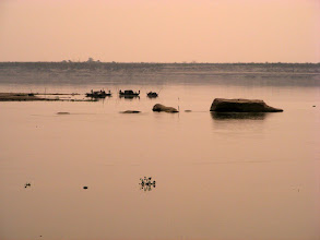 Photo: Taking a living off the Brahmaputra