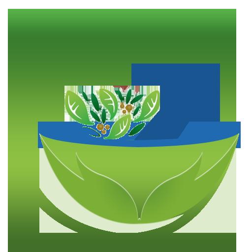Capsules and herbal leaf vector designmedicine pharmacy logomedical  health symbolherbal health care logo- CanStock