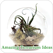 Amazing Terrarium Ideas Android APK Download Free By Wiscarini