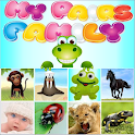 MyPairs Family - memory fun icon