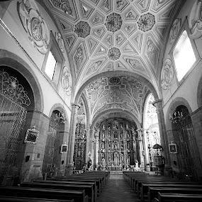 Church at Puebla I by Cristobal Garciaferro Rubio - Buildings & Architecture Other Interior ( interior, catholic, bench, church, puebla, dome, black and white, building, monotone )