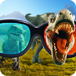3D Glasses Camera Simulator