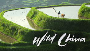 Wild China thumbnail