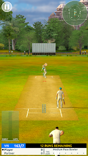 Cricket Megastar - náhled