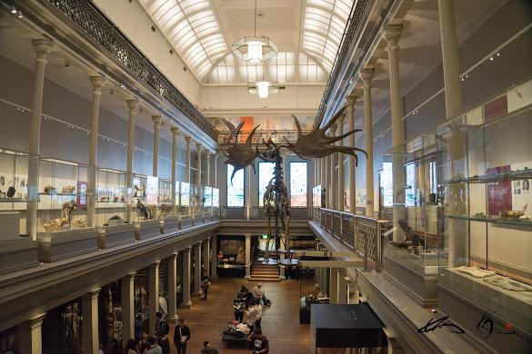 幅広いジャンルの文化を博するオーストラリア博物館