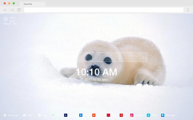 Baby Seal Cute Cute HD New Tabs Theme