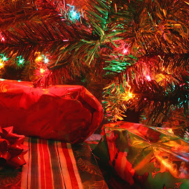 And Presents Under the Tree by Bill Diller - Public Holidays Christmas ( christmas gifts, christmas tree, decorated tree, decorations, wrapped presents, christmas, wrapping paper, wrapped gifts, present, lights, presents, gifts, decorated christmas tree )