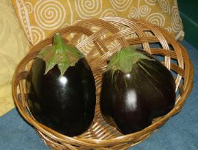 Photo: Beautiful eggplants 10/25/10