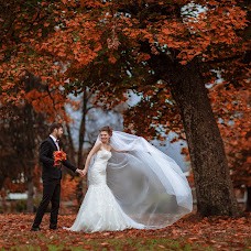 Wedding photographer Elena Metelica (ELENANDROMA). Photo of 24.10.2016