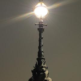 Lighting Queen's Walk by DJ Cockburn - Artistic Objects Technology Objects ( electric light, queen's walk, uk, streetlight, southwark, oxo tower wharf, heraldic dolphin, iron, england, winter, london, snow, lampstand, victorian, night )