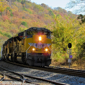 Autumn Arrival  by Rick Covert - Transportation Trains ( fall colors, railroad, locomotive, arkansas, autumn colors, railroad tracks, arkansas photographer, autumn leaves, autumn, trains, fall color )