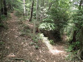 右に下山路(巡視路)