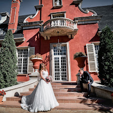 Wedding photographer Denis Pazyna (POCTOB). Photo of 20.02.2017