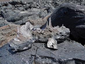 Photo: кусок отколовшейся лавы. ОСТРАЙААААА,,,,и красивая