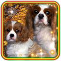 Puppy Songs icon