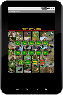 True Birds Memory Game_1