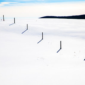 Snowy Fence by Anita Atta - Landscapes Prairies, Meadows & Fields ( field, fence, winter, snow, sunshine )