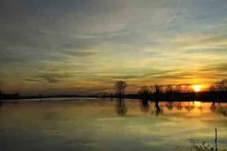 Photo: Nederland Natuur Rivierengebied Foto: Jan Dijkstra