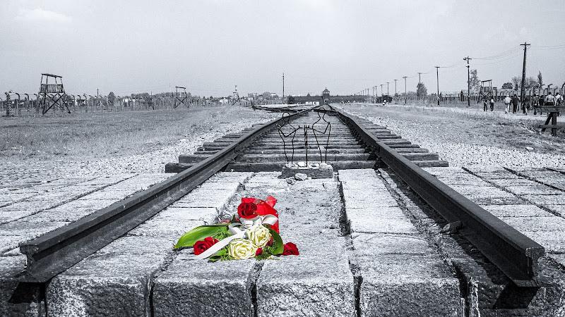 Birkenau - Un epilogo da non dimenticare di Nevio Saule