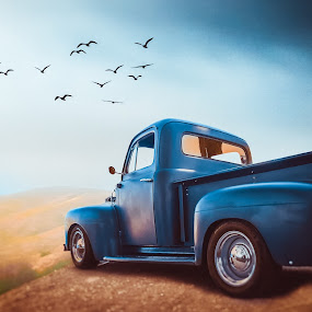 Classic Ford by Apollo Reyes - Transportation Automobiles ( sky, pickup, truck, ford, birds,  )