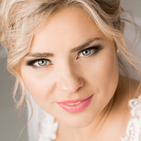 Wedding photographer Alina Evtushenko (AlinaEvtushenko). Photo of 16.01.2018