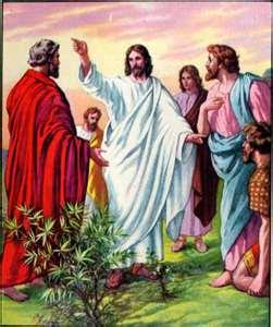 Thưa Chúa, con đi…