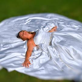 Dream Wedding by Don Mann - Wedding Bride (  )