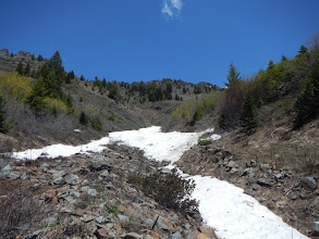 Photo: Snow gully, a harbinger of what's to come