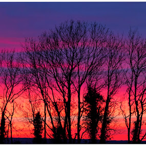 by David Ferris - Landscapes Sunsets & Sunrises