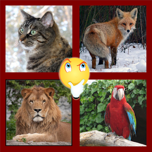 Zoomania – Animals Quiz for PC and MAC