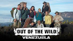 Out of the Wild: Venezuela thumbnail