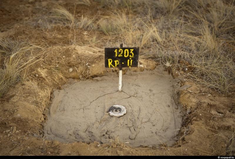 В результате нейтронной активации угольных пластов под землей происходят какие-то непонятные процессы. Был случай, когда скважина взорвалась через 15 лет после проведения испытаний.