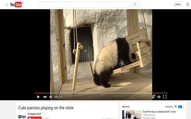 Panda Controls