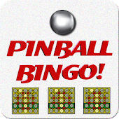 Pinball Bingo Machine