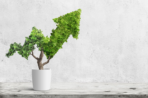 STEPHEN CRANSTON: Value versus growth investing, and everything in between
