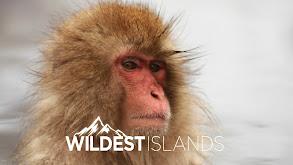 Wildest Islands thumbnail