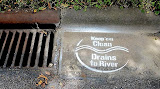 Dumping into storm drains is not just wrong..