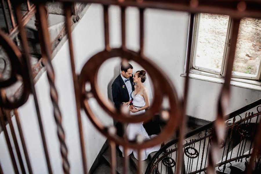Wedding photographer Milan Lazic (wsphotography). Photo of 14.01.2016
