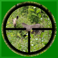 Hunting Spot Finder apk
